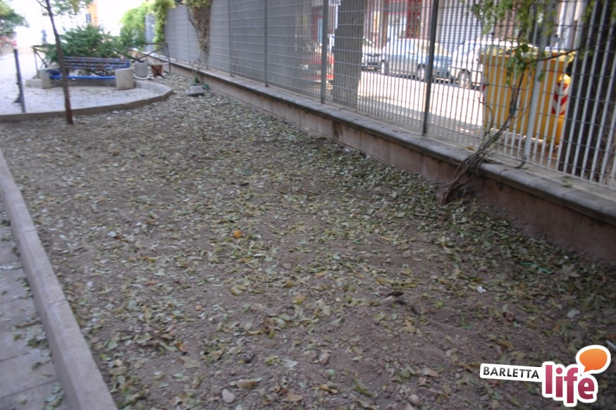 Barletta nel giardino per cani il degrado assicurato - Giardino per cani ...
