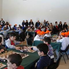 Campionati Giovanili Studenteschi di scacchi, fase provinciale