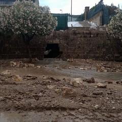 Bomba d'acqua su Barletta, crolla il muro di cinta della Timac