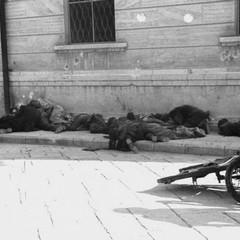 Vigili urbani trucidati presso il Palazzo delle Poste di Barletta, 12 settembre 1943