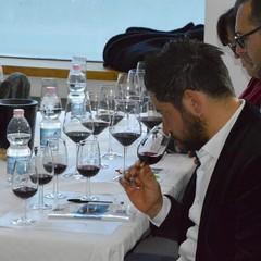Onav: wine, passion & skill
