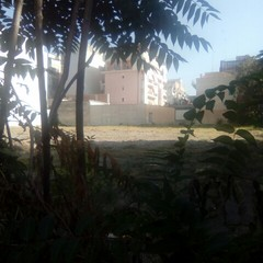 Casolare abbandonato in via Bezzecca a Barletta, la denuncia di Carlo Leone