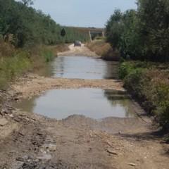 Pozza d'acqua in contrada Tittadegna