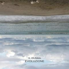 Copertina album il dubbio