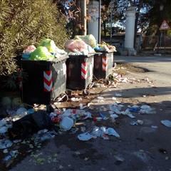 Cumuli di rifiuti a Montaltino