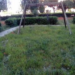 Degrado nelle aree verdi della periferia barlettana