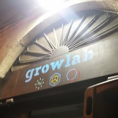 growlba