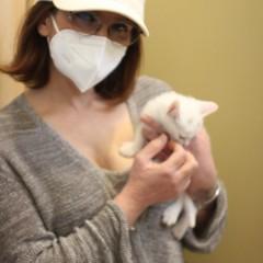 ENPA Barletta: il volontariato che salva i piccoli mici