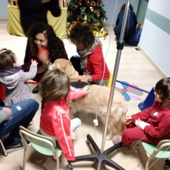 Coccole per guarire, la pet therapy arriva all'ospedale di Barletta