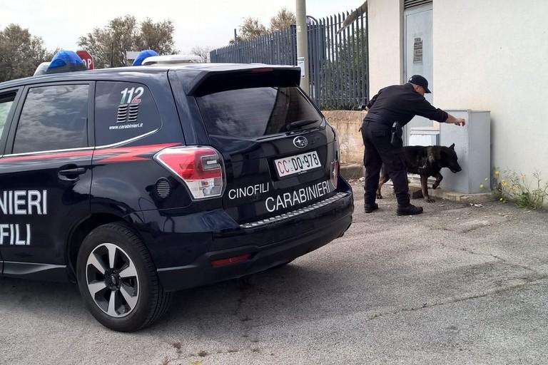 Operazione antidroga, tre gli arresti a Barletta