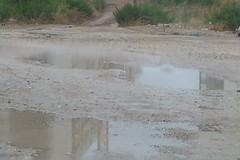 Zona Parco degli Ulivi, bagni di fango a cielo aperto a Barletta