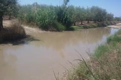 Contrada Tittadegna, la vera piscina comunale di Barletta