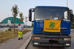 Alberi senz'acqua nella periferia di Barletta, in azione i volontari di Legambiente
