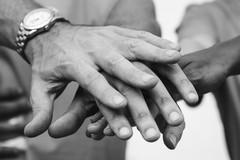 L'ANPI BAT dona i proventi del tesseramento alla Protezione Civile pugliese
