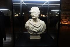 """Il viaggio di """"Annibale"""" giunge a Capua, la mostra che si terrà fino al 28 ottobre"""