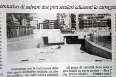 Quell'ultimo pino in via Vittorio Veneto: la storia giornalistica dal 1992