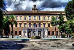 Boom di polemiche all'Università di Bari, tasse troppo alte