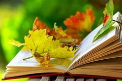 """La lettura protagonista di un incontro presso la scuola """"Rodari"""""""