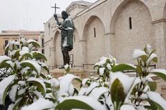 Dopo la neve, domani scuole aperte a Barletta
