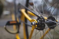 Blind Challenge, il giro della Puglia in bici passa anche da Barletta