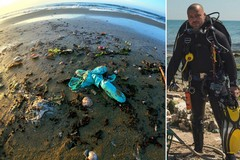 Binetti: «Guanti e mascherine abbandonati sulle spiagge di Barletta»