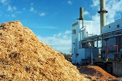 Centrale a biomasse: la storia infinita