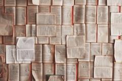 """Le attività della biblioteca """"Loffredo"""" di Barletta per la primavera"""