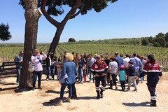 Oltre 1000 visitatori a Canne della Battaglia per l'apertura straordinaria