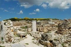Scuola e archeologia a Canne della Battaglia sull'asse Puglia-Abruzzo