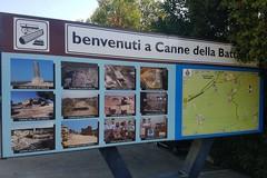 """""""Canne della Battaglia dall'archeologia all'ambiente"""": 120 studenti presentano il progetto"""