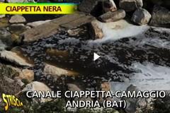 """Barletta di nuovo nel mirino di """"Striscia"""" col Ciappetta Camaggio"""