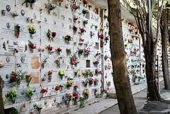 Cimitero di Barletta, i dipendenti sono in stato di agitazione