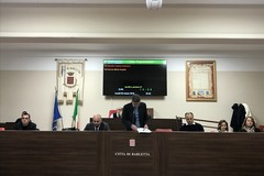 """Consiglio comunale di Barletta, tutti favorevoli alla strategia """"plastic free"""""""