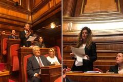 Messina sottosegretario, gli auguri del senatore Damiani