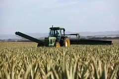 Criminalità rurale, nella Bat furti di trattori e attrezzature agricole