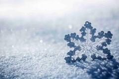 Maltempo, in arrivo nevicate sulla Puglia settentrionale