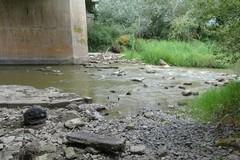 Prelievi d'acqua indiscriminati, in pericolo le acque del fiume Ofanto
