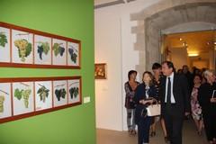 Le opere di De Stefano in mostra al Castello di Barletta