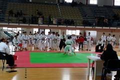 Trofeo Funakoshi 2015, Barletta patria del karate per un giorno