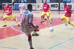 Futsal Barletta, nel pomeriggio il match con il Bitonto al Paladisfida
