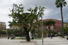 Sassi contro gli agenti della Polizia locale di Barletta, ragazzini in fuga