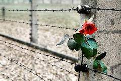 I colori dell'Olocausto, una mostra per non dimenticare