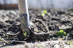 Agricoltura, Flai Cgil: «Nessuna mancanza di manodopera nella Bat»