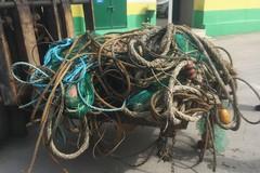 Pesca a strascico non autorizzata, operazioni sul litorale di Barletta