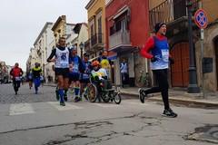 Spingitore squalificato dalla mezza maratona di Barletta a causa del suo cane