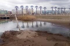 Canale H, disgusto lungo la spiaggia di Barletta