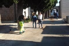 Al via gli interventi di pulizia presso il Cimitero di Barletta