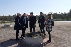 Pulizia e sicurezza strade extraurbane, un accordo tra Anas e Comune di Barletta