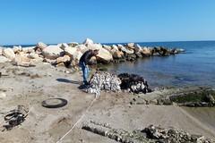 Rifiuti sulla spiaggia di Barletta, trovati anche scarti di lavorazione di opifici
