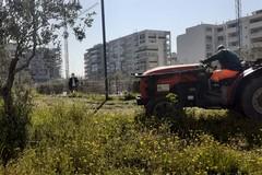 Parco dell'Umanità di Barletta, attività di manutenzione ordinaria